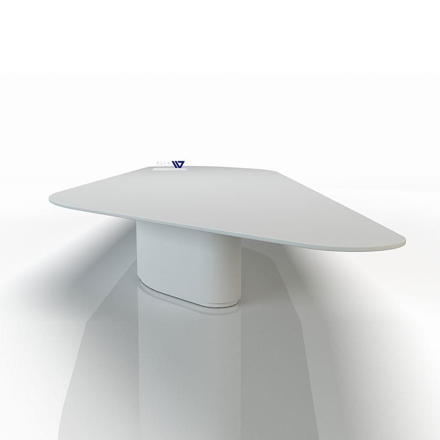 Siliquaeform Conference Table
